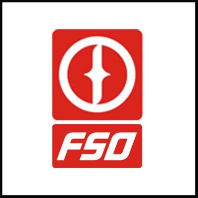 FSO.jpg